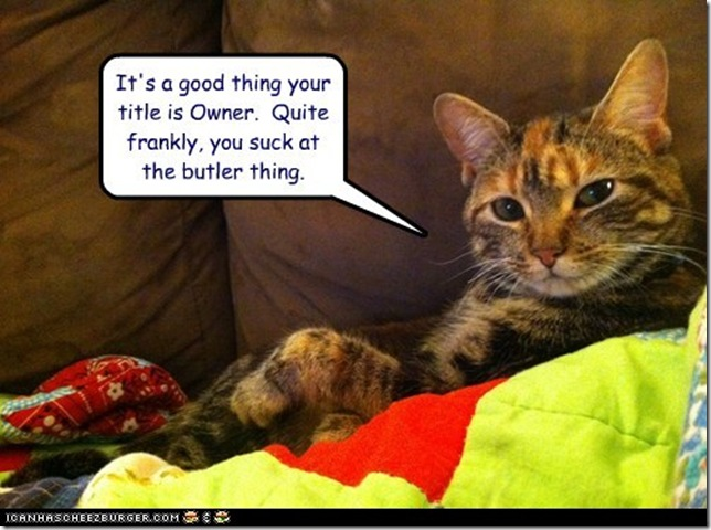 funny-pictures-its-a-good-thing-your-title-is-owner-quite-frankly-you-suck-at-the-butler-thing[1]